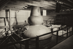Whisky Distillation Process